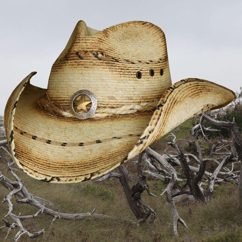 画像1: スター&パーム ウエスタン ストローハット(ナチュラル)/Western Straw Hat