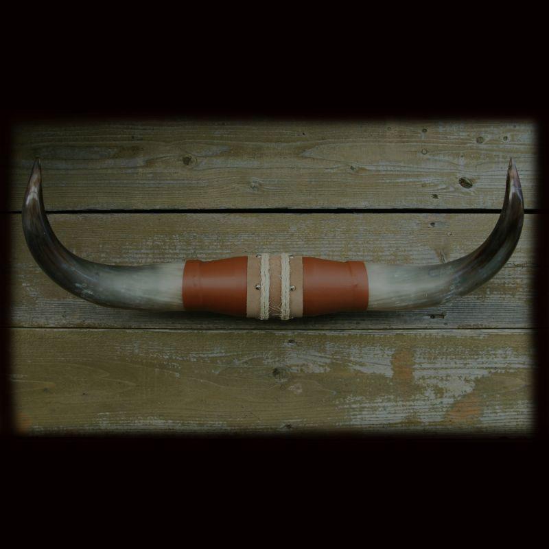 画像1: 牛の角 ブルズホーン /Bull's Horn