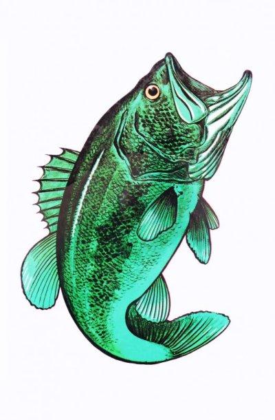 画像1: アウトドア仕様 防水ステッカー Bass
