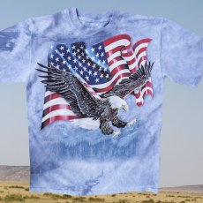 画像1: アメリカンイーグル&星条旗 半袖Tシャツ(ライトブルー)/T-shirt  (1)