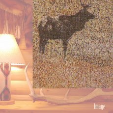 画像2: ペンドルトン キーピングウォッチ(エルク)ブランケット/Pendleton Keeping Watch Blanket(Elk) (2)