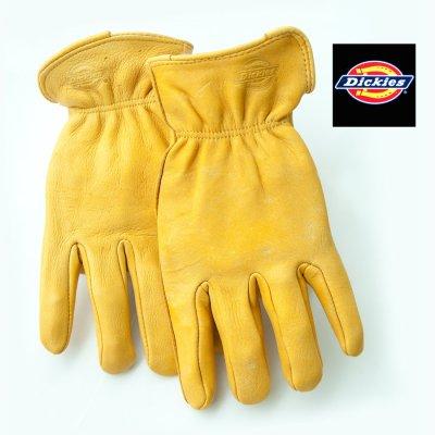 画像1: ディッキーズ 鹿革手袋 パインイエロー(裏地なし)M/Dickies Genuine Deerskin Leather Gloves(Pine Yellow)