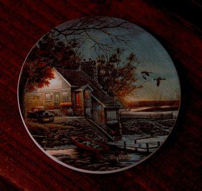 画像1: ネイチャーコースター/Coaster