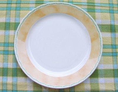画像3: ノリタケログハウスディナープレート/Noritake Dinner Plate