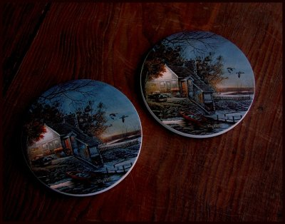 画像3: ネイチャーコースター/Coaster