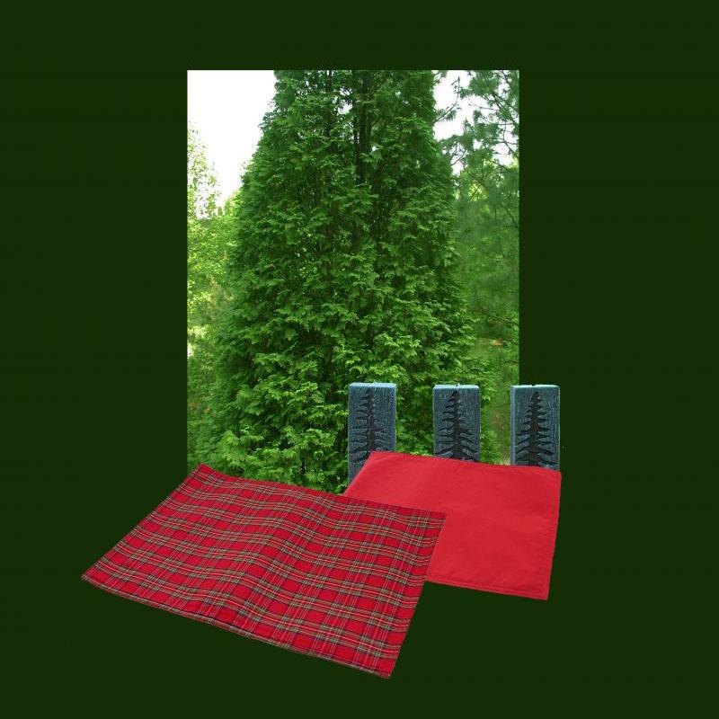 画像1: パーティー リバーシブル ランチョンマット (レッドグリーンタータン/レッド)/Place Mat