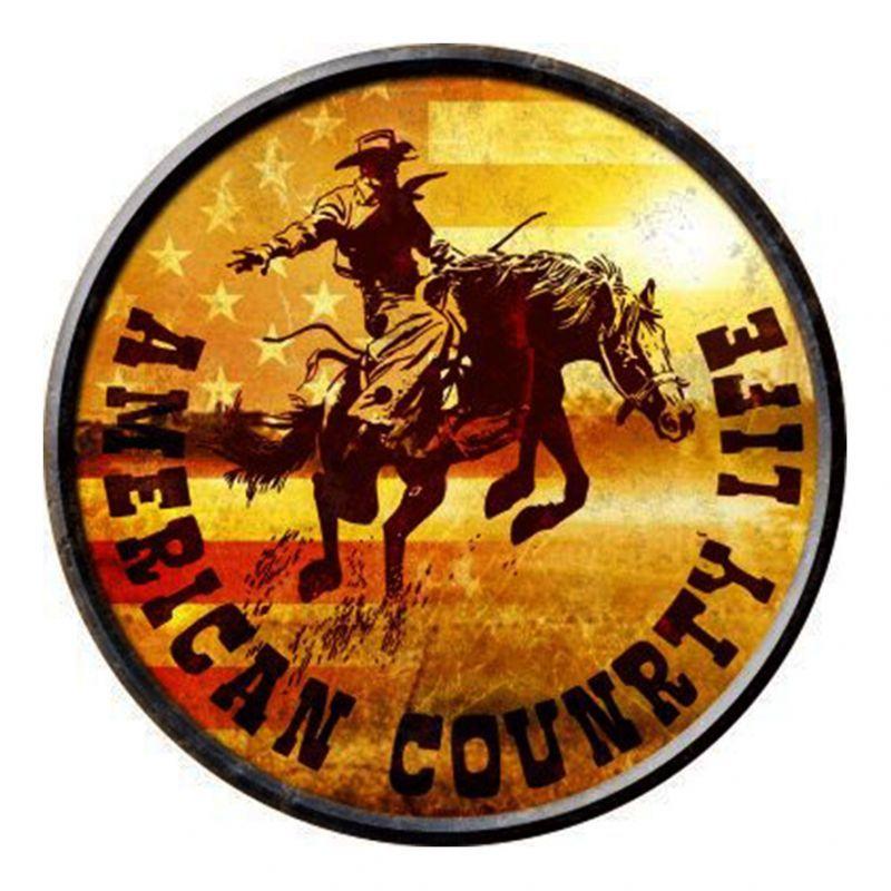 画像1: アメリカン カントリーライフ メタルサイン/Metal Sign American Country Life (1)