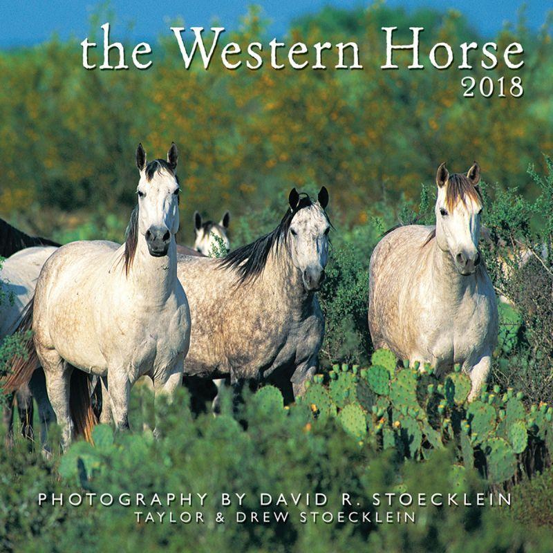 画像1: ウエスタン&ホース カレンダー ウエスタン ホース/2018 Western Horse Calendar