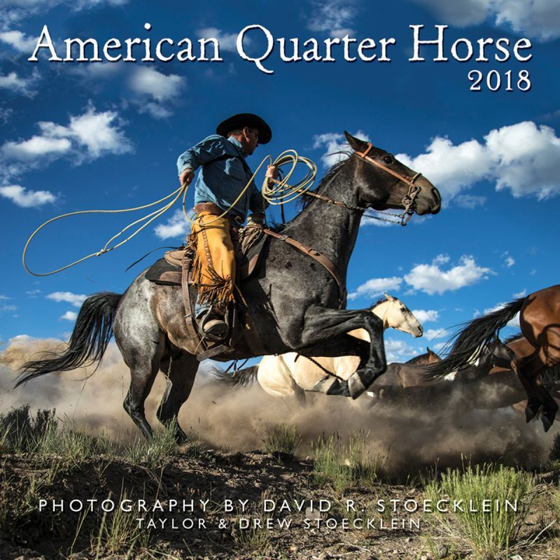 画像1: ウエスタン&ホース カレンダー アメリカンクォーターホース/2018 American Quarter Horse Calendar