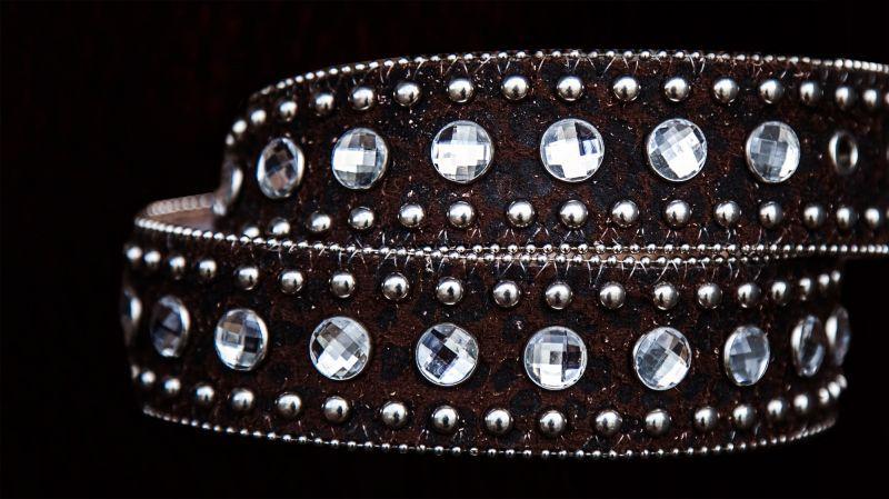 画像2: ラインストーン&スタッズ スリーピース ウエスタン レザーベルト(レパードブラウン)/Western Leather Belt