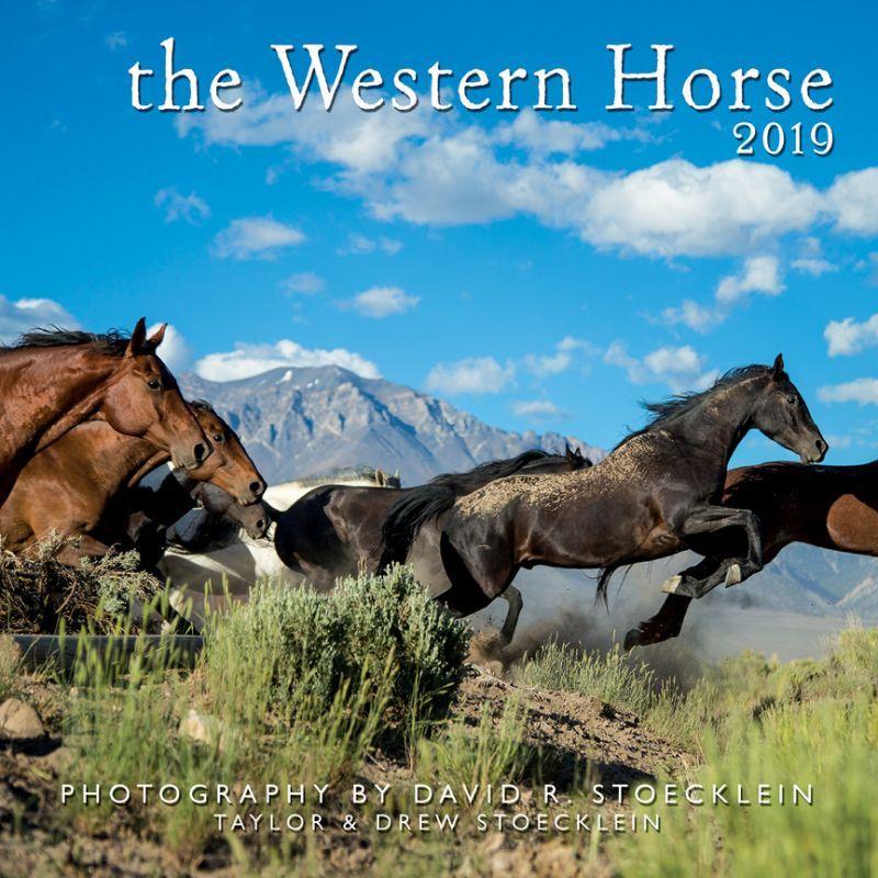 画像1: ウエスタン&ホース カレンダー ウエスタン ホース/2019 Western Horse Calendar