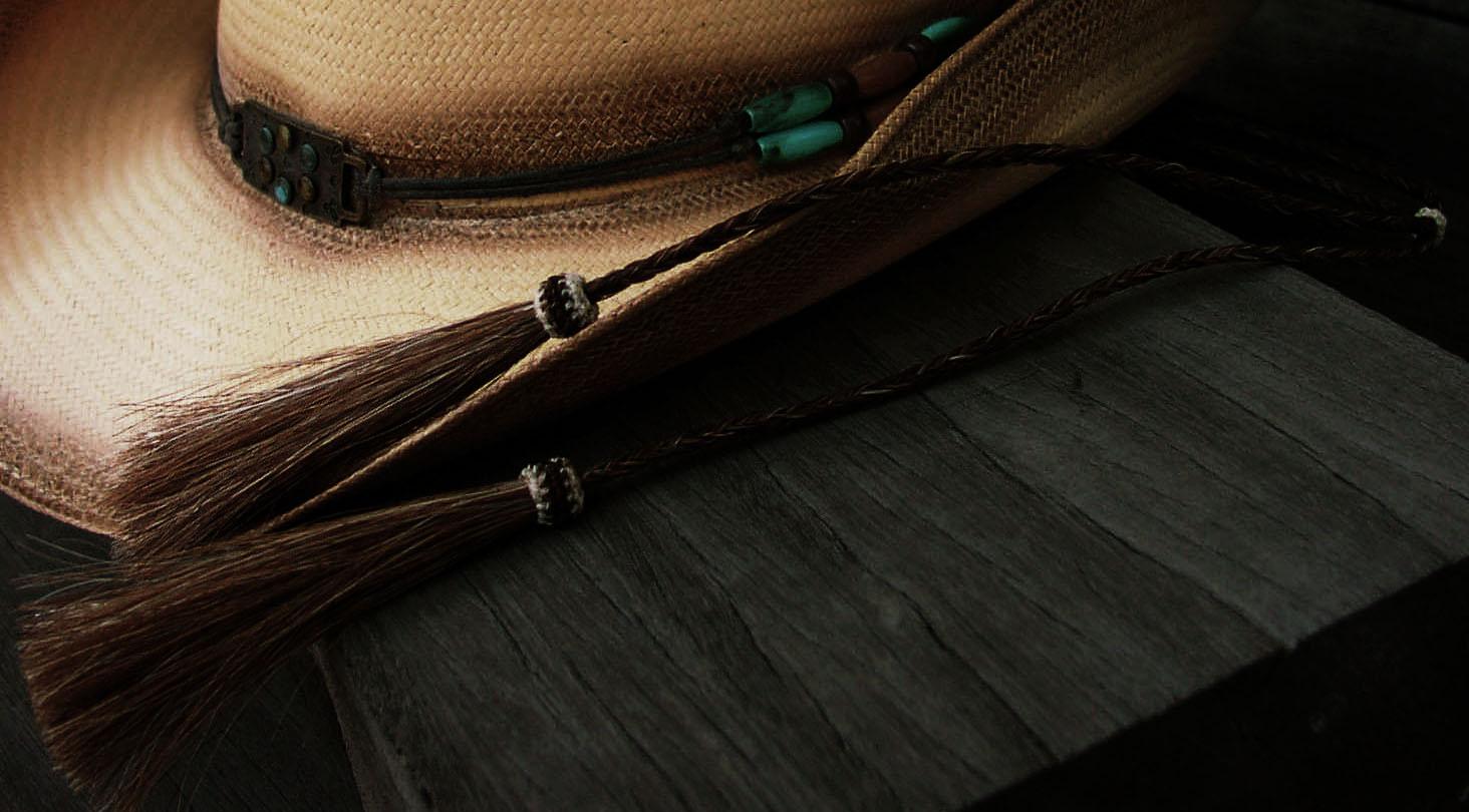 画像3: ホースヘアー スタンピード ストリングス ブラウン(ハット用あごひも)/Horse Hair Stampede Strings