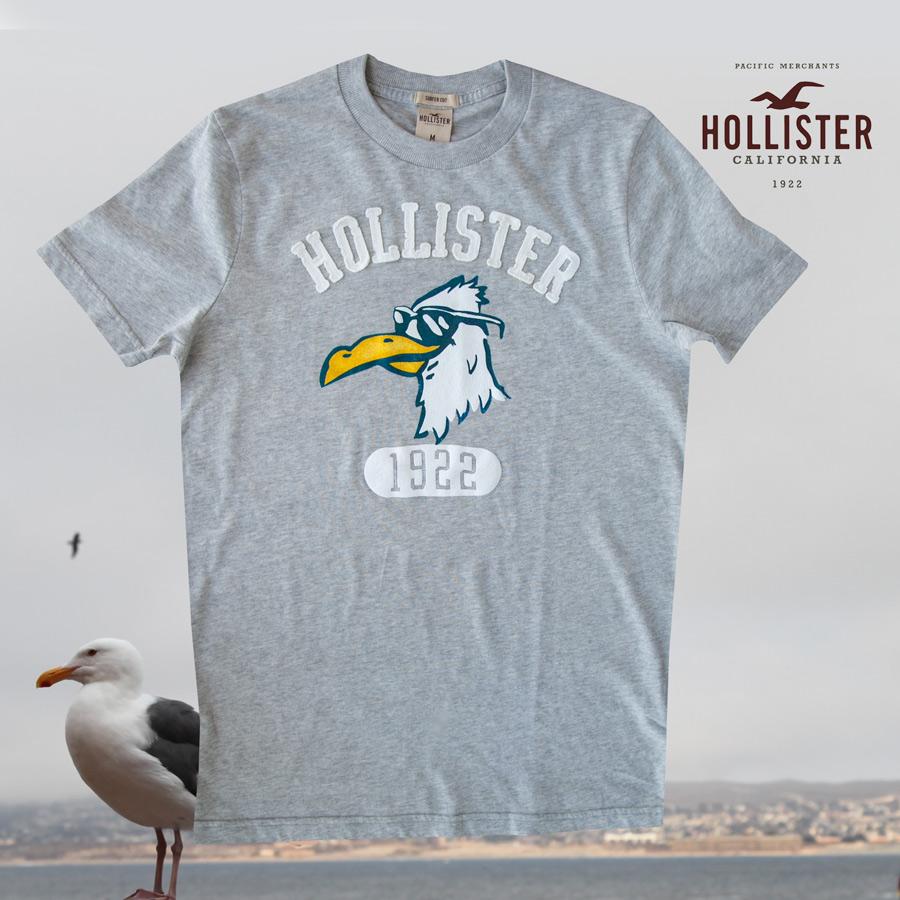 画像1: ホリスター アップリケロゴ 半袖 Tシャツ グレーM/Hollister Short Sleeve T-Shirt (Grey) (1)