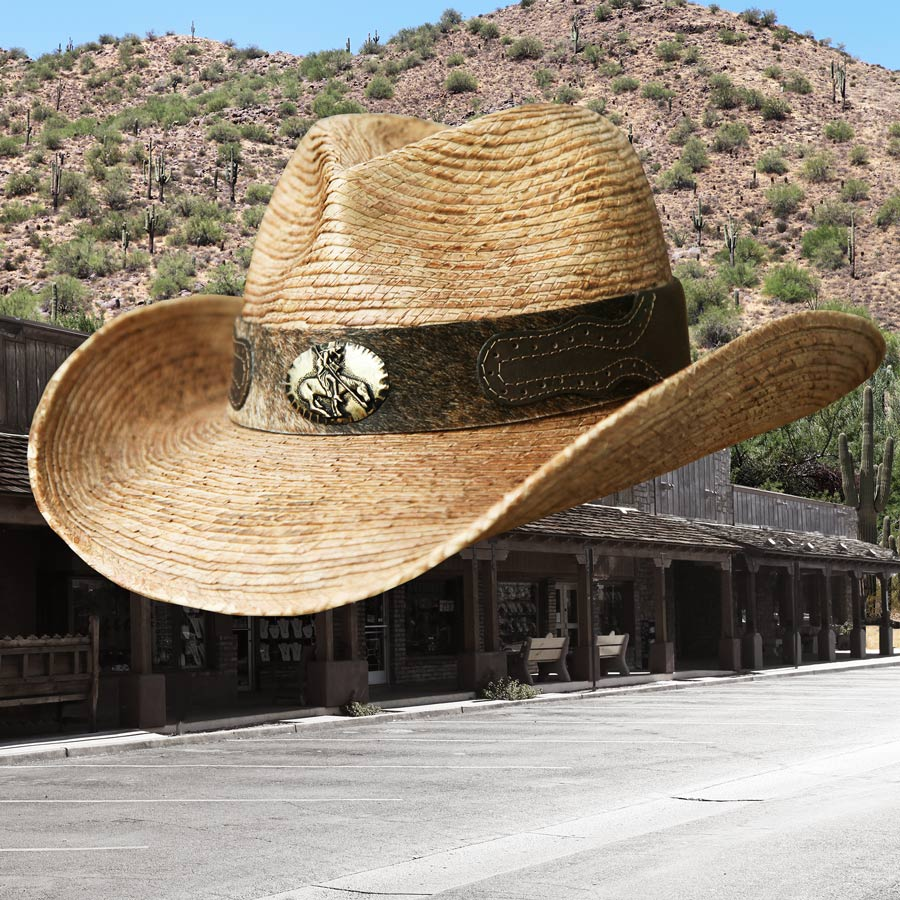 画像1: 馬毛革&牛革 カウボーイ ストローハット(パームファイバー)/Western Straw Hat (1)