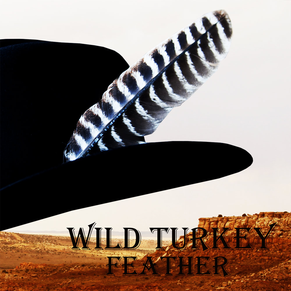 画像1: ワイルドターキー Wild Turkeyの羽(長さ27cm〜29cm) (1)